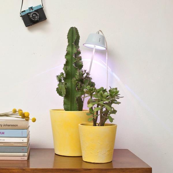 Lampada Per Piante : Lampada per piante a led chlorophyll
